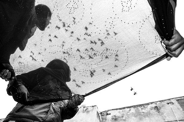 Photographie de Taha Ahmad de femmes tenant un tissu et regardant des oiseaux dans le ciel dans le cadre du festival Photographique Influences indiennes à Beaucouzé