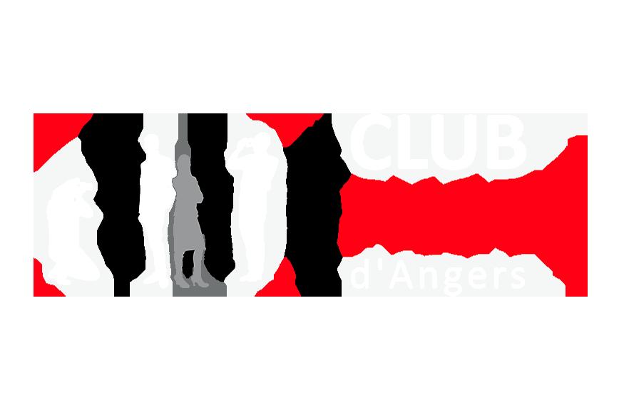 Logo partenaire du Festival influences Indiennes du Club Photo d'Angers