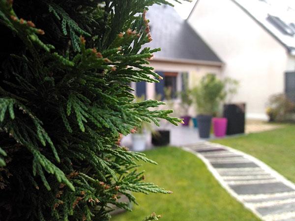 travail de l'école Maurice Ravel de Beaucouzé photo d'une maison depuis le jardin avec au premier plan une haie