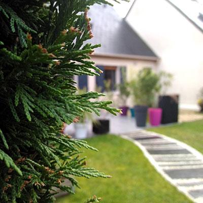 travail des écoles de Beaucouzé photo d'un maison depuis le jardin avec au premier plan une haie